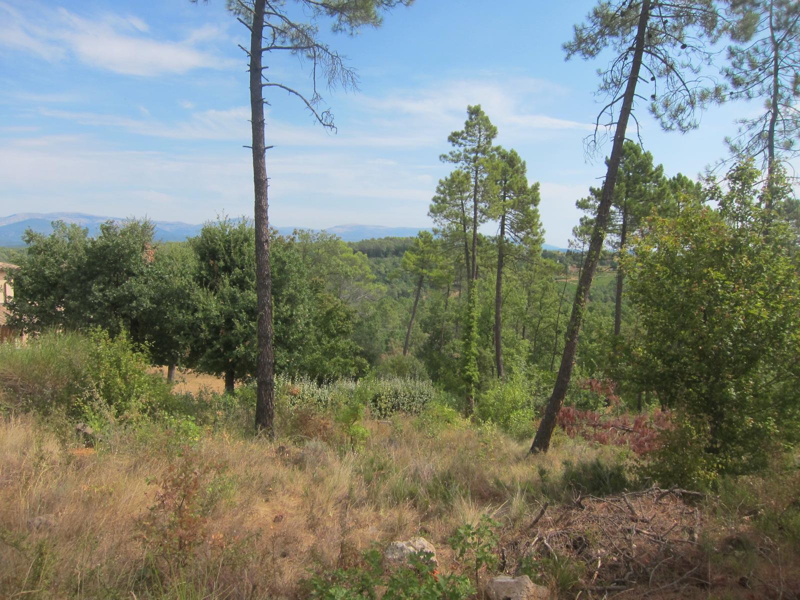 Saint Paul en forêt, terrain à bâtir 1300 m²