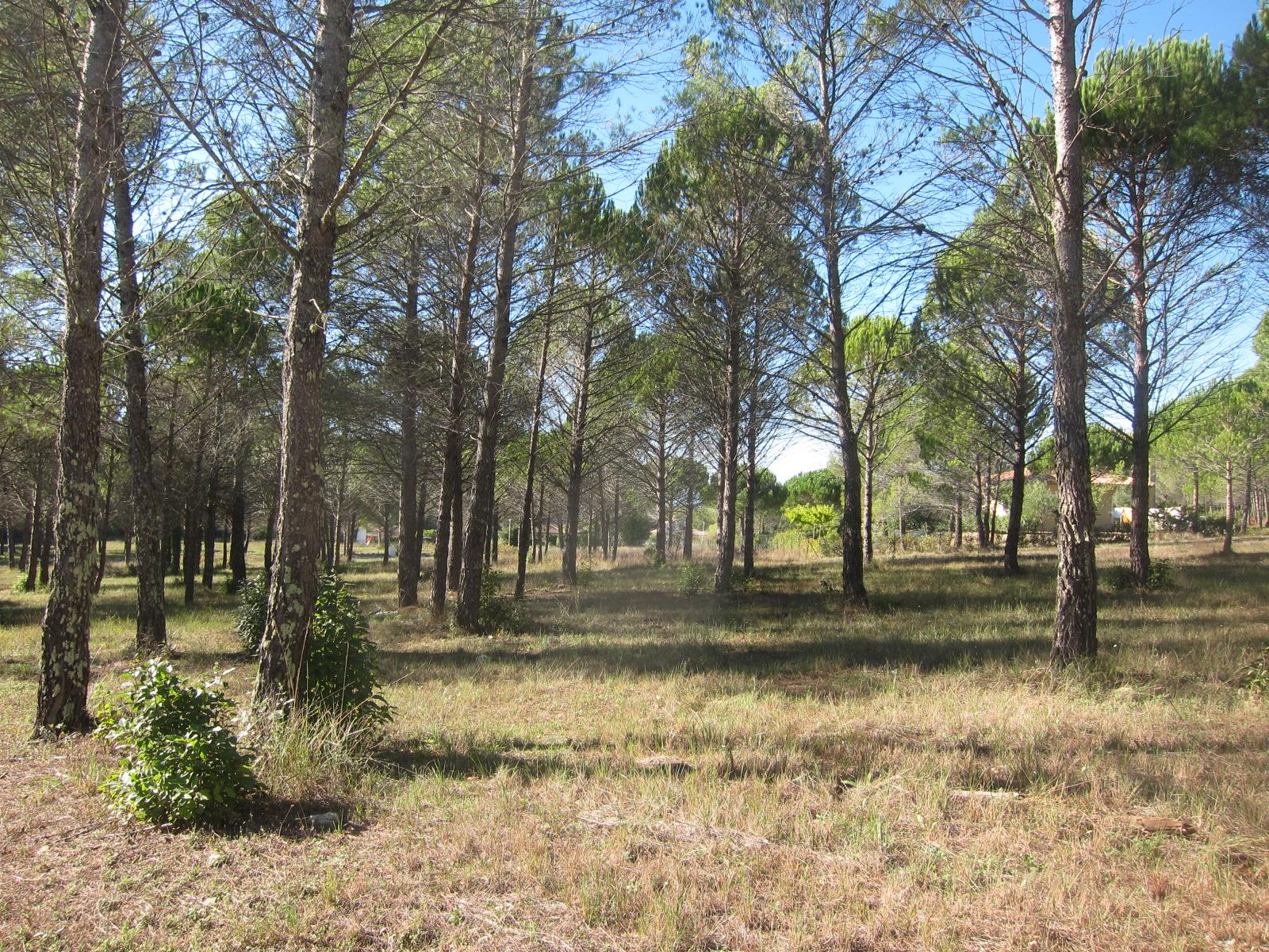 Bagnols en Forêt, terrain 2200 m² domaine privé sécurisé