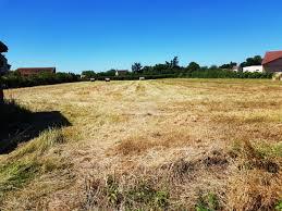 SAINT POURCAIN , terrain 5000 m²